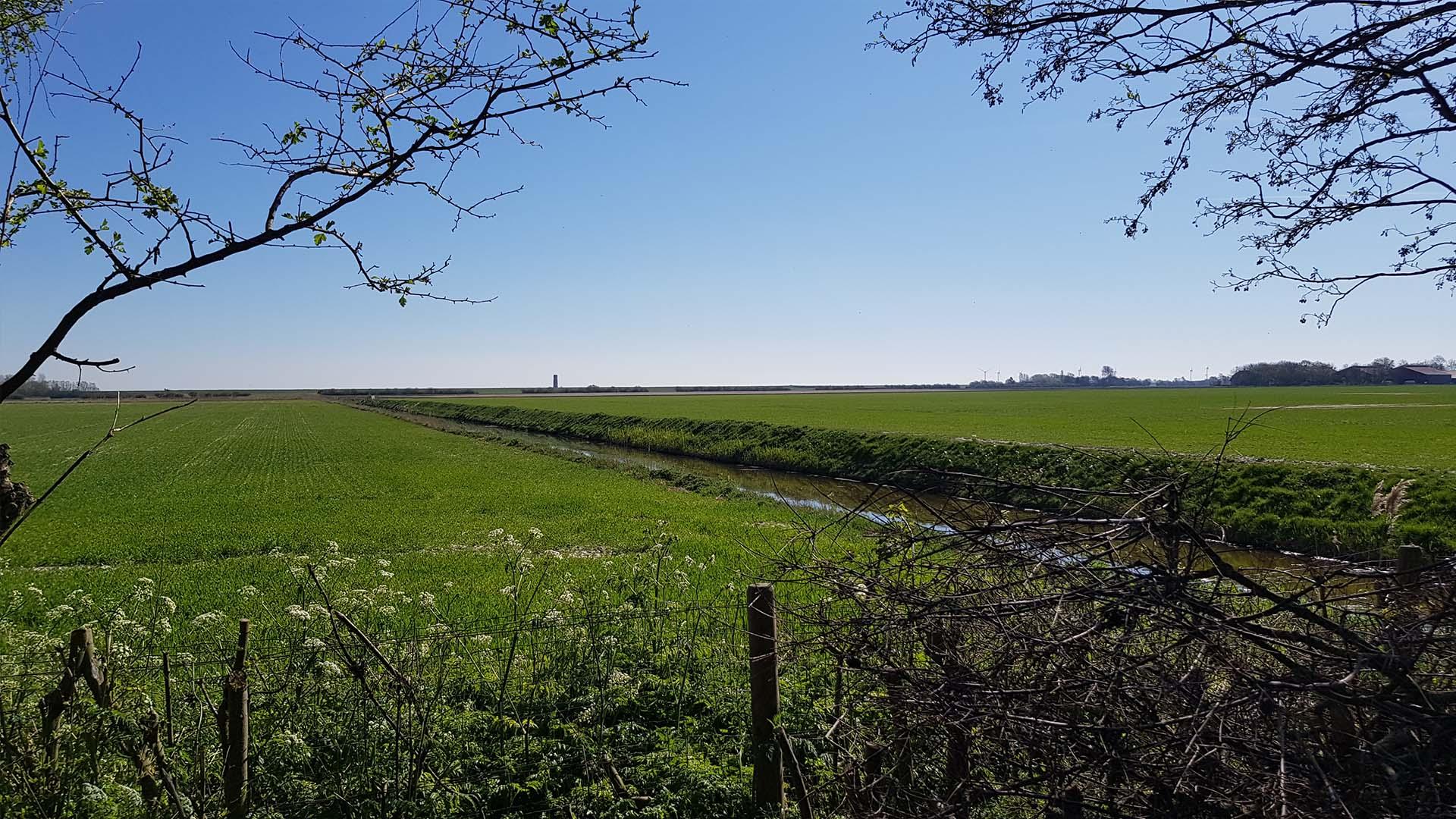 uitzicht B&B Plompetorenzicht Schouwen-Duiveland